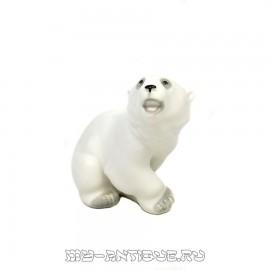 «Белый медведь»